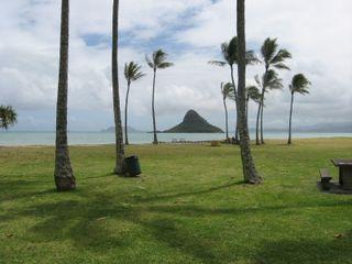 1-Hat Island -