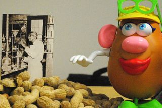 Peanut Man
